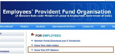How to Check Employee Provident Fund (EPF) Balance Online epfindia.com
